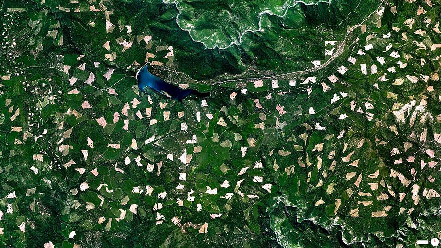 El Dorado National Forest, Georgetown, California, USA