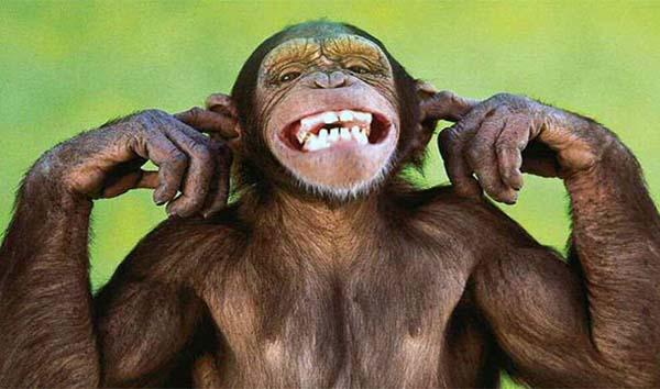 7.) Being bitten by a domesticated monkey (Alexander I of Greece in 1920).