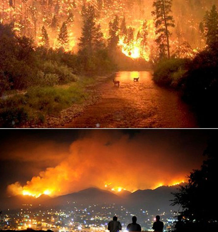 6) A large and deadly wildfire in Montana, 2000 (US)