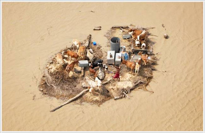 12) Young man gets marooned by flood waters following a monsoon, 2010 (Pakistan)
