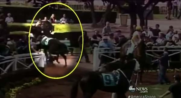 But when they did, the runaway racehorse was headed right for 5 year-old Roxy Key.