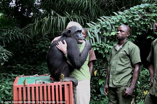 She clutched at Jane, giving her a BIG chimpanzee hug.