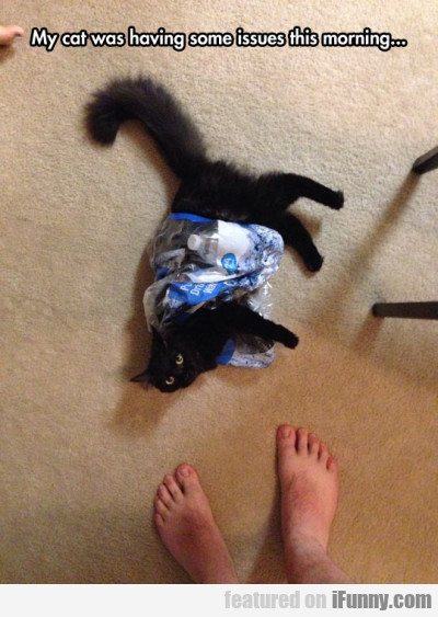 My Cat Was Having Some Issues This Morning...