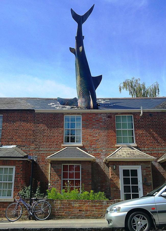1.) The Shark (Oxford, UK)