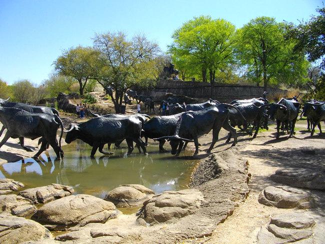 13.) Cattle Drive (Dallas, Texas, USA)