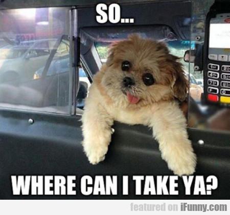 So... Where Can I Take Ya