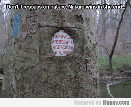 Don't Trespass On Nature, Nature Wins In The...