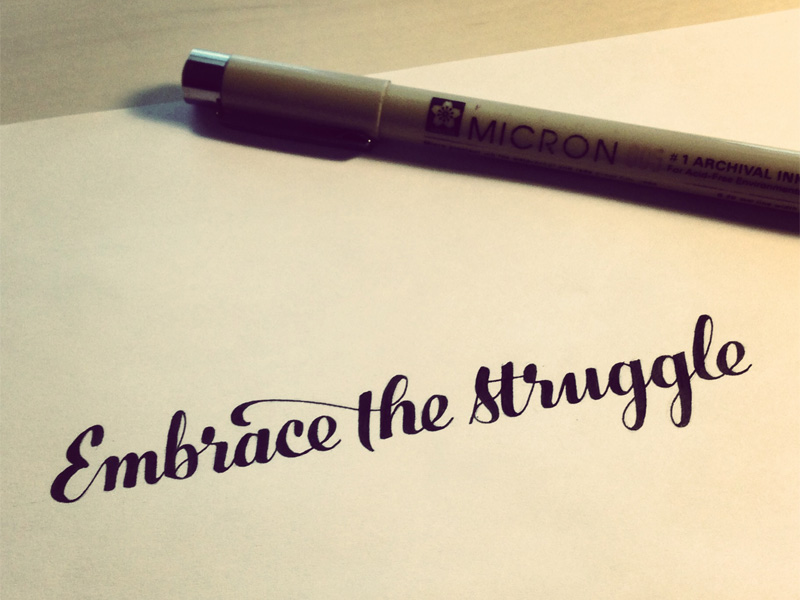 29) Embrace The Struggle.