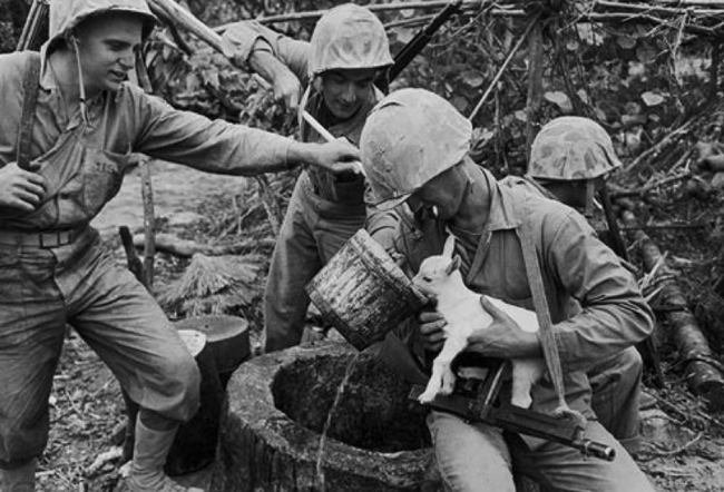 4.) American Marines give a baby goat some water during World War II.