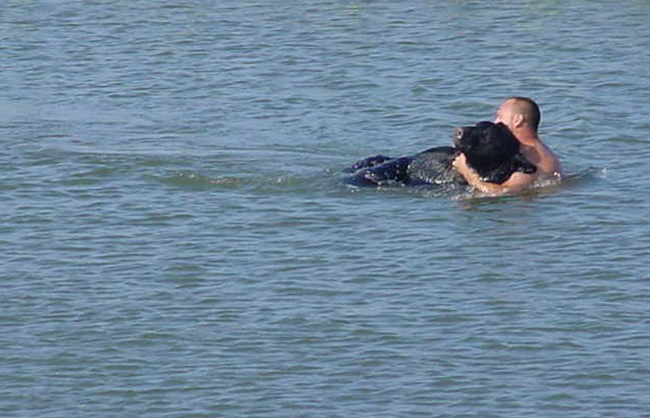 12.) Biologist Adam Warwick ran into the water to save a 400-lb black bear from drowning after an attempt to sedate the animal went wrong.