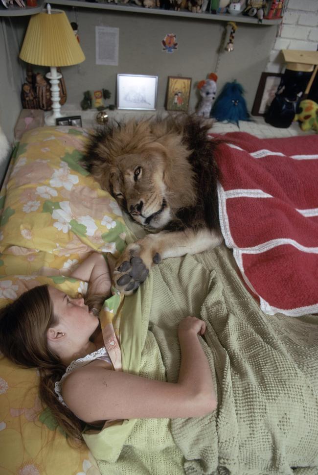 "'Oh, good morning!"""