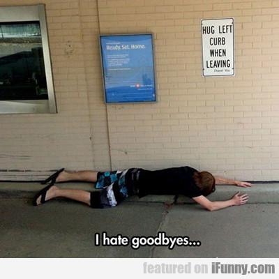 I Hate Goodbyes...