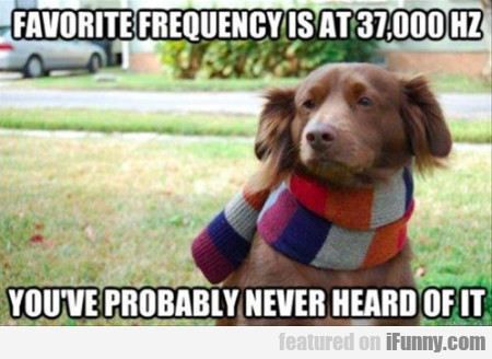 Favorite Frequency Is At 37,000hz. Probably...