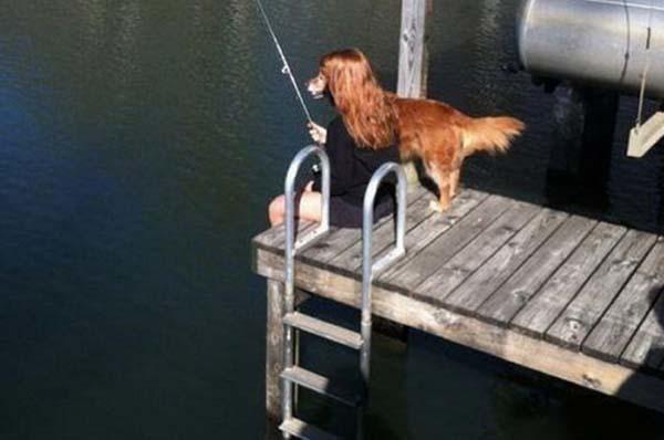 1.) Ah yes, the fishing retriever.
